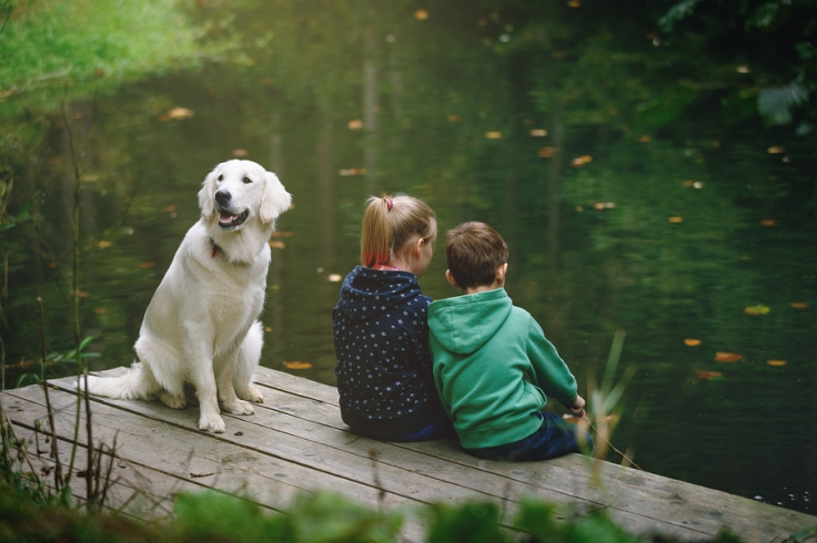 girl, boy and dog sitting on dock at lake